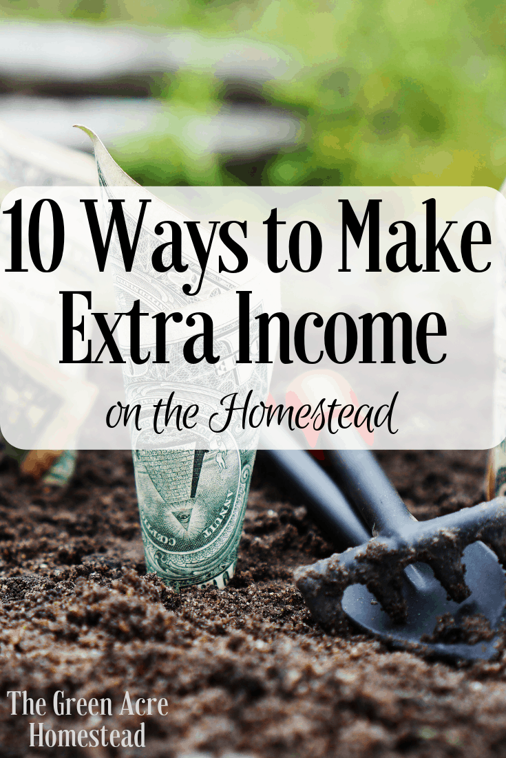 10 Ways to Make Extra Income on the Homestead
