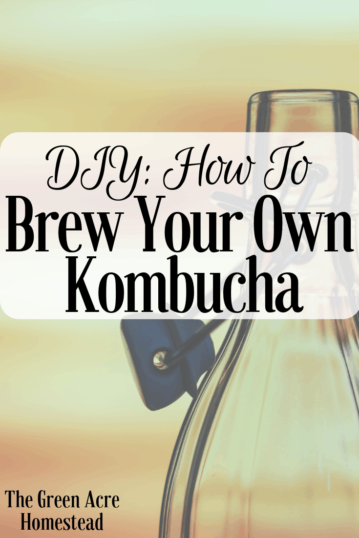 DIY_ How to Brew Your Own Kombucha (1)