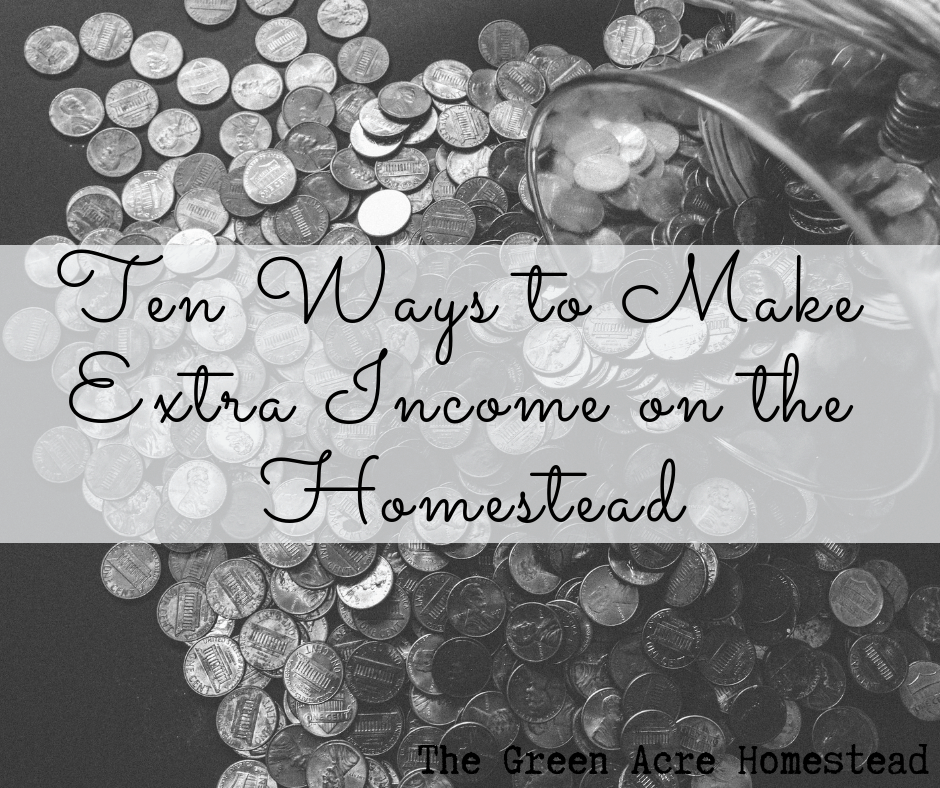 Ten Ways to Make Extra Income on the Homestead