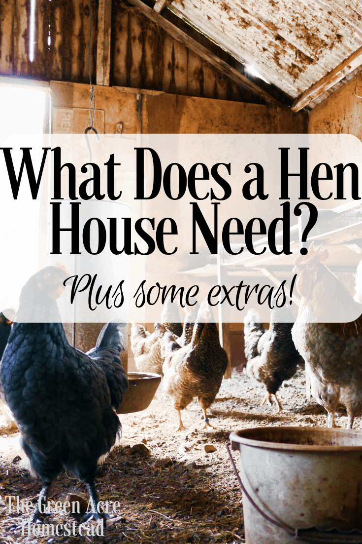 What Does a Hen House Need_ (2)
