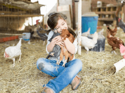 3 Good Reasons to Train Your Animals to Love You (If They Don't Already!)