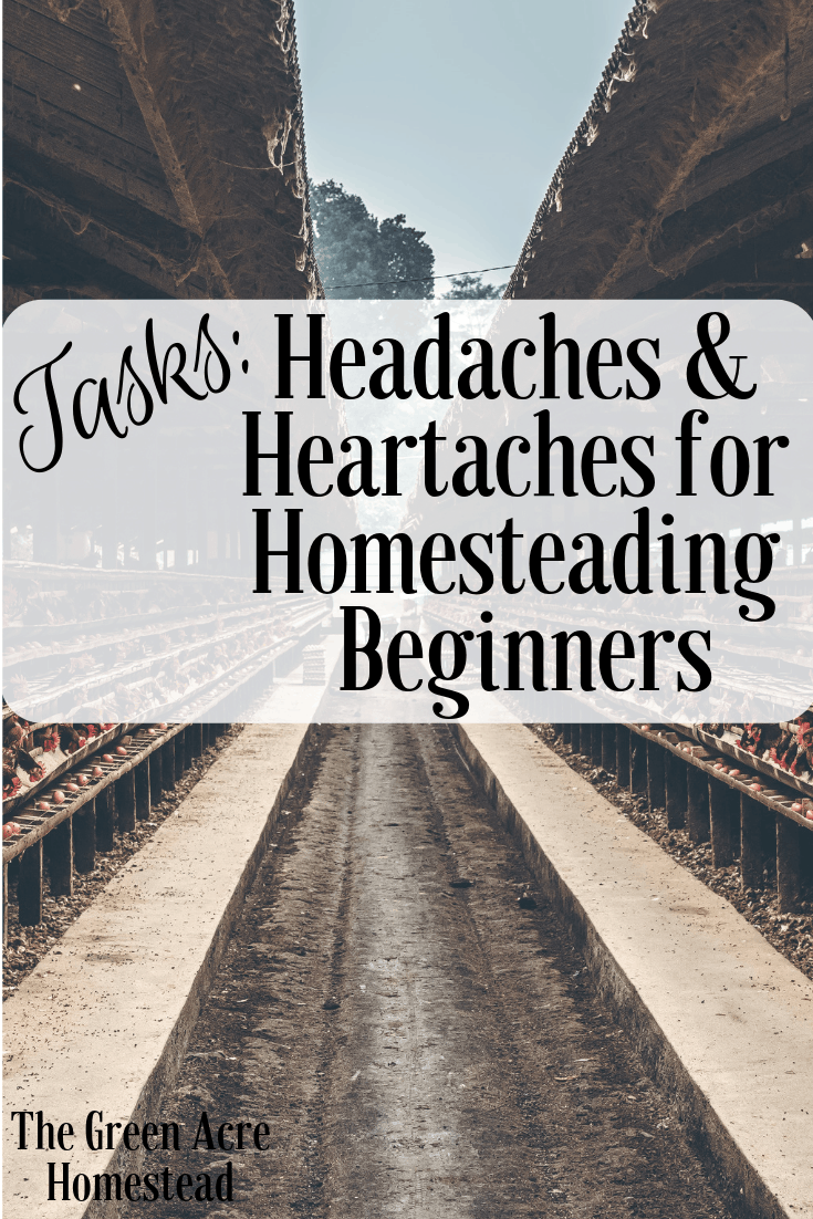 Tasks_ Headaches and Heartaches for Homesteading Beginners (1)