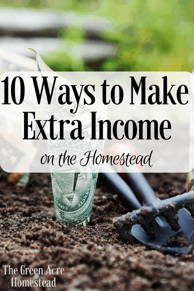 make extra income on the homestead
