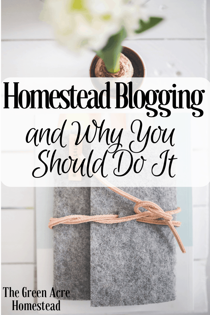 Homestead Blogging and Why You Should Do It (4)