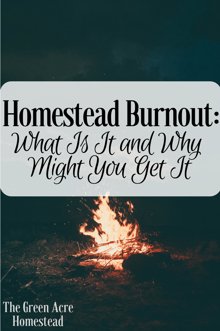 Homestead Burnout_ What Is It and Why Might You Get It