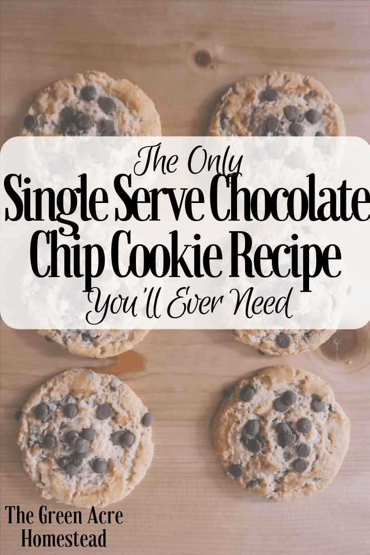 The Only Single Serve Chocolate Chip Cookie Recipe You'll Ever Need (1)