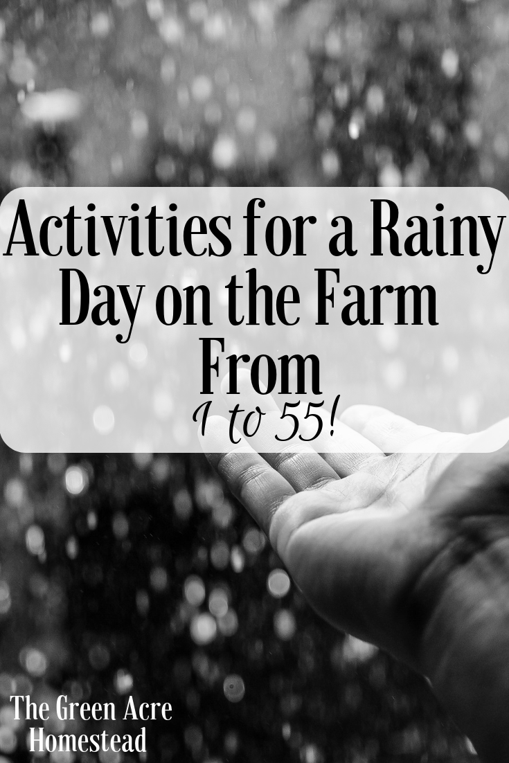 Activities for a Rainy Day on the Farm_ From 1 to 55!