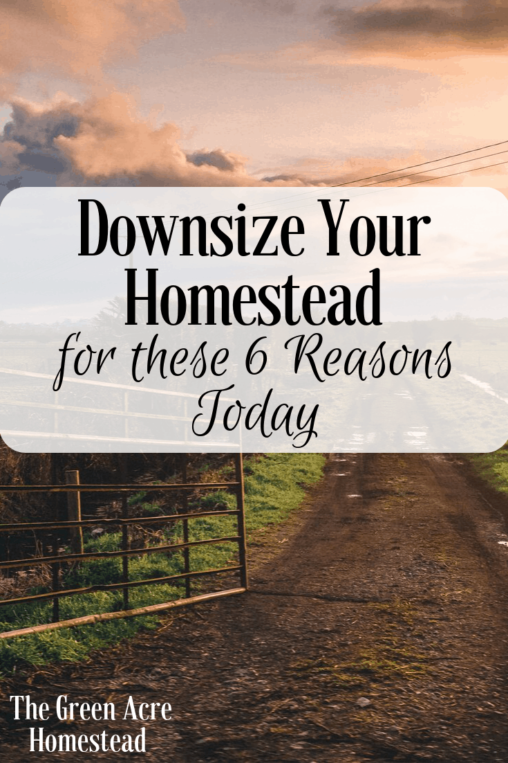 Downsize Your Homestead for these 6 Reasons Today