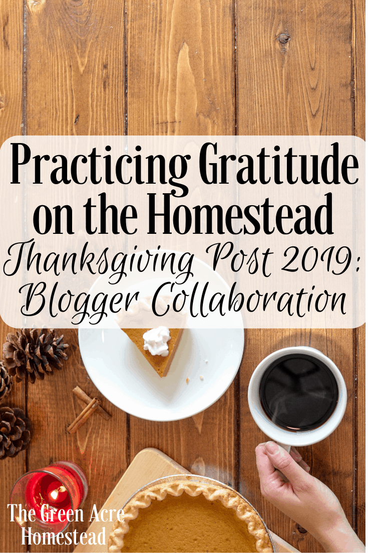 Practicing Gratitude on the Homestead