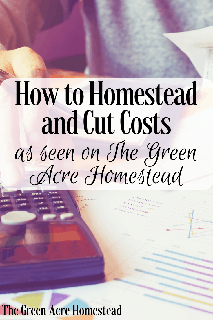How to homestead and cut costs