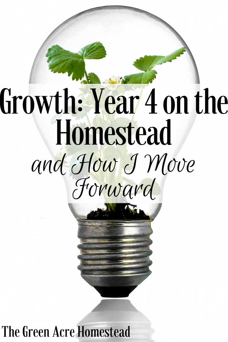 Growth: Year 4 on the Homestead and How I Move Forward