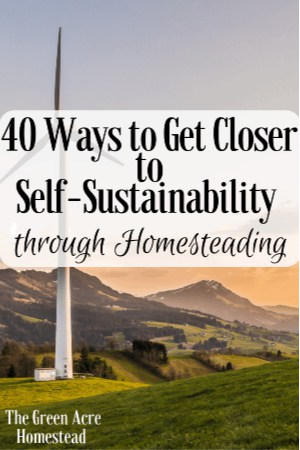 ways to get closer to self sustainability