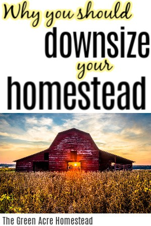 downsize your homestead