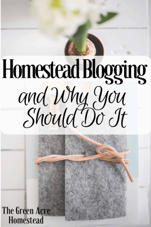 Why you should start homestead blogging