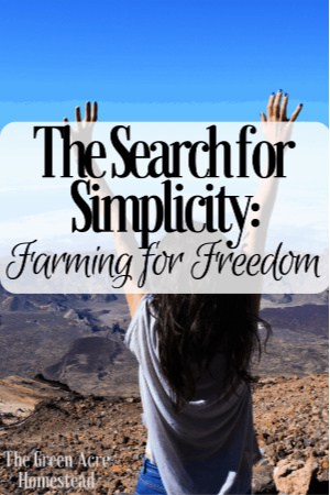 search for simplicity