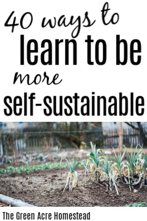 ways to be more self sustainable